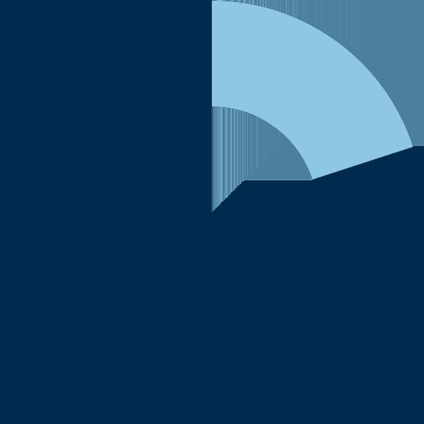 pie chart 20%