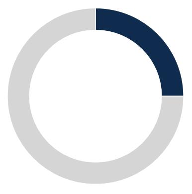 25% pie chart